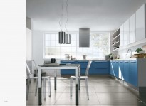 LARIUS great kitchen designs
